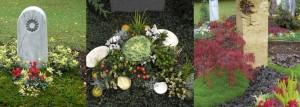 Als Mitglied der Vereinigung Stuttgarter Friedhofsgärtner sowie der Genossenschaft Württembergischer Friedhofsgärtner garantieren wir für professionelle Grabpflegefür die gesamt Laufzeit einer Grabstätte. Neuanlagen, Rahmenbepflanzungen und saisonale Bepflanzungen führen wir mit Sorgfalt und nach Ihren Vorgaben aus. Wir sind hauptsächlich auf dem Prag-Friedhof und dem Friedhof-Weilimdorf tätig und bieten neben der Grabpflege folgende zusätzliche Leistungen: Dekoration und Trauerfloristik zur Ausschmückung Ausschmückung von Aufbahrungsräumen und Feierhallen Transporte von Trauerspenden auch an andere Stuttgarter Friedhöfe Neuanlage und Rahmengestaltung von Gräbern Dauergrabpflege (Grabpflege-Abonnement)